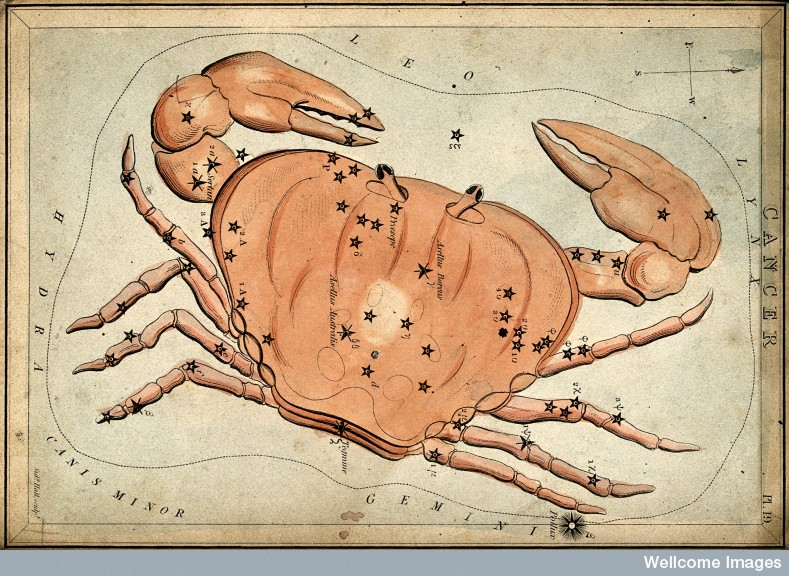 V0024939 Astrology: signs of the zodiac, Cancer. Coloured engraving b