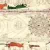 astrologia41a